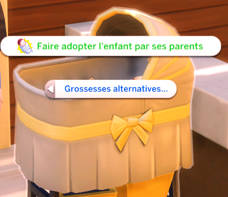 Interaction_faire_adopter_enfant