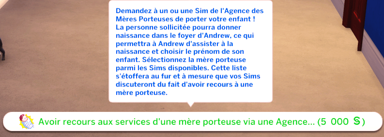 Services_mere_porteuse_agence_sims4